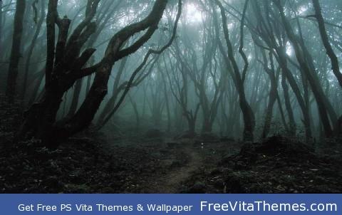 Dark Woods PS Vita Wallpaper