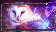 Download Owl in flame zip lockscreen PS Vita Wallpaper