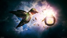 Download Nectar Heaven PS Vita Wallpaper