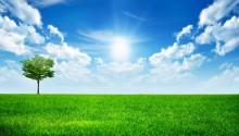Download Sunny Bight Day PS Vita Wallpaper