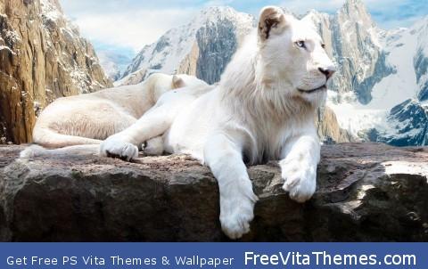 Snow Lion PS Vita Wallpaper