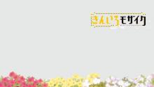 Download Kiniro Mosaic – Flowerbed PS Vita Wallpaper